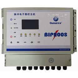 电子围栏系统BIP200S脉冲主机最新电子围栏主机图片