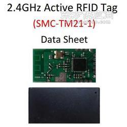 2.4GHZ电子标签模块图片
