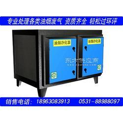 济南环保油烟净化设备厂家 油烟净化装置商家