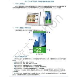ALCD-P系列式液晶显示器图片