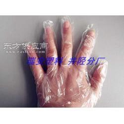 家居必备一次性手套 PE手套 食用薄膜手套 卫生手套图片