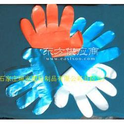 PE一次性手套最专业厂商图片