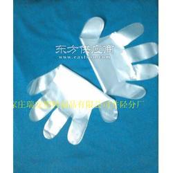 塑料卫生一次性手套图片