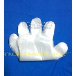 塑料卫生手套经销商图片