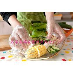 食品专用塑料薄膜一次性手套图片