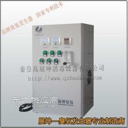 农村饮用水臭氧发生器图片