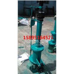 专业生产的大丰DTZ1000-300电动推杆图片