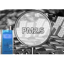 PM2.5速测仪CW-HAT100图片