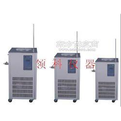 供应巩义英峪仪器低温冷却液循环泵DLSB-20/20图片