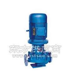 CQG125-250管道式磁力泵厂家图片
