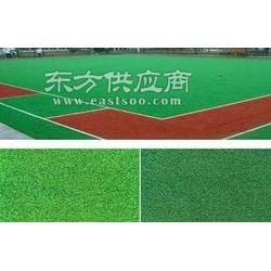 供应人造草坪草坪图片
