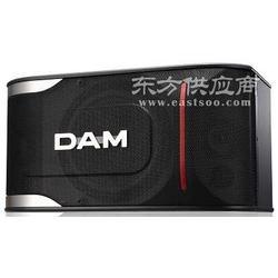 卡拉OK10寸音响DAM音响 DDS-670EX图片