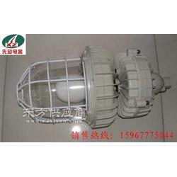 专业生产CBD防爆弯杆灯图片
