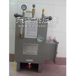 供应中邦电热式 空温式防爆气化器图片