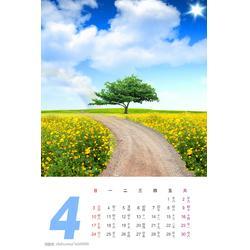 深圳贴纸印刷、便签贴纸印刷、国兴印刷图片