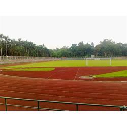 菘茂体育 塑胶跑道设施 东莞篮球场塑胶跑道图片