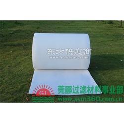 莞郦生产 废气治理 建筑通风 防治污染 公共建设 空调业专用过滤棉图片