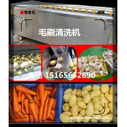 大型地瓜红薯清洗脱皮机图片