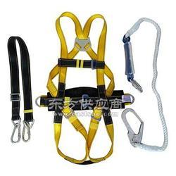 供应力士安全-高端型悬挂围杆安全带图片