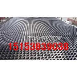 供应车库塑料排水板HDPE种植排水板图片