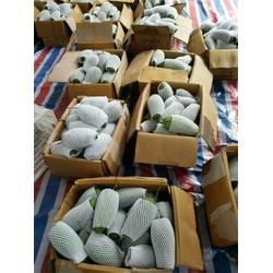 龙口云生网套机报价(图)、塑料网套机、网套机图片