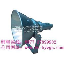 海洋王NTW9270 1000W投光灯图片