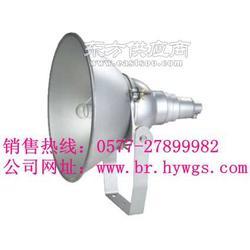 防震投光灯NTC9210型号 防震投光灯报价图片