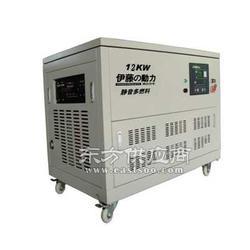 YT12RGF伊藤12KVA汽油发电机图片