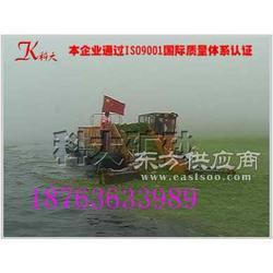 割草船哪家好 科大割草船 湖面水葫芦打捞船 海面水藻清理船图片