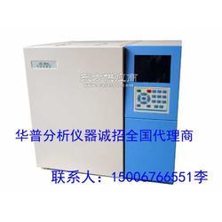 环境空气监测的多功能专用气相色谱仪图片