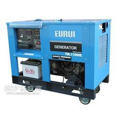 进口东洋柴油发电机TDL11000E图片