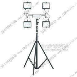 SFD3000_SFD3000便携式工作灯图片