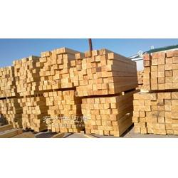 加拿大铁杉木图片