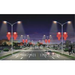 LED红灯笼 LED灯笼 LED大红灯笼图片