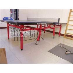 家用高级乒乓球台生产厂家 网络直销给力经营图片