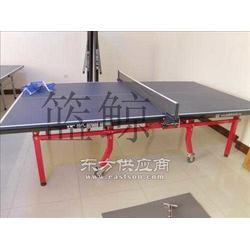 大彩虹乒乓球台厂家国际出卖报价便宜用着放心图片