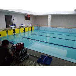 游泳比赛打分系统图片