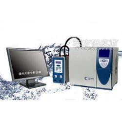 非甲烷总烃分析仪图片