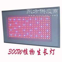 300w大功率led植物生长灯图片