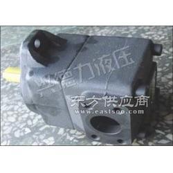 台湾KCL凯嘉VQ45-200FRAA油泵图片