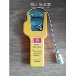 供应罗伯特SQJ-IA便携式氢气检测仪图片