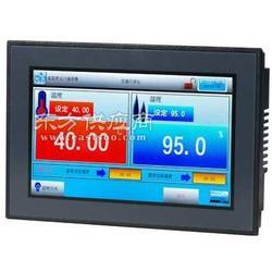 TEMI990温湿度可程式控制器图片
