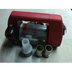 (电瓶泵)、电瓶泵、天津卓硕泵业有限公司油泵大全图片