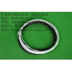 铁芯扎带、桥鑫铁芯扎带厂、PVC铁芯扎带图片