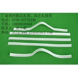 优质铁芯扎带|桥鑫PP铁芯扎带|铁芯扎带图片