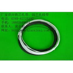 环保铁芯扎线带-桥鑫铁芯扎线带-铁芯扎线带图片