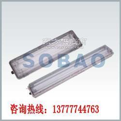 BAY81-Q28x2防爆防腐全塑荧光灯T5节能型图片