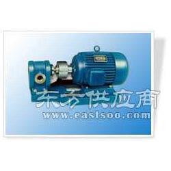 高壓油泵東方油泵自吸油泵2CY系列圖片