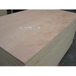 马上出 胶合板 新品 杨木芯 胶合板 厂家供应图片