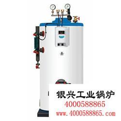 蒸汽发生器|0.75吨蒸汽发生器|蒸汽锅炉图片